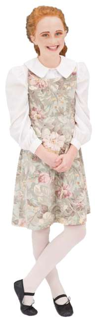 Rental Costumes for The Sound of Music Curtain Dress