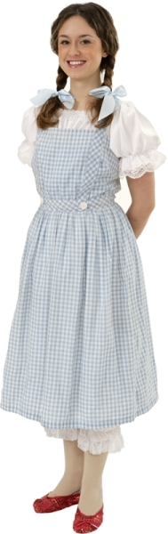 Rental Costumes for The Wizard of Oz - Dorothy Gale  sc 1 st  The Costumer & Wizard of Oz Costume Rentals