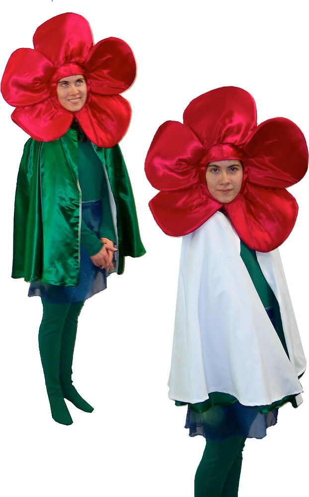 Rental Costumes for The Wizard of Oz - Poppy with reversible cape to transition to snow covered poppy